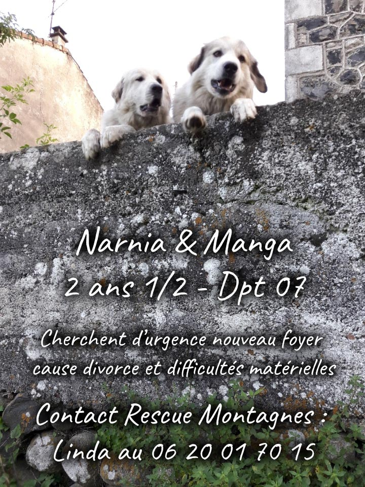 narnia-manga